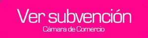 subvencion-camara-comercio-diseno-pagina-web